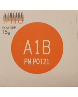 P0121 VINTAGE PRO A1B 15G