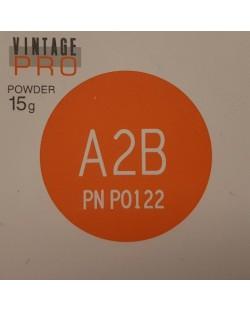 P0122 VINTAGE PRO A2B 15G