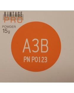 P0123 VINTAGE PRO A3B 15G