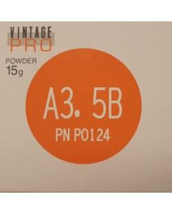 P0124 VINTAGE PRO A3,5B 15G