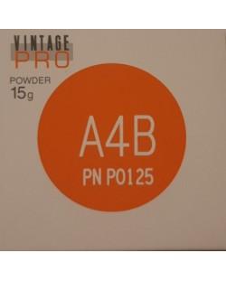P0125 VINTAGE PRO A4B 15G